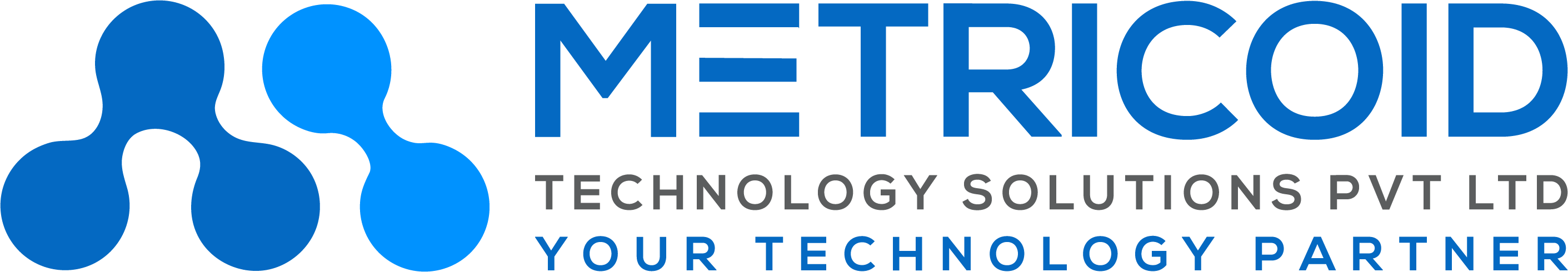 Metricoid – A Custom Software Product Development & Consulting Company