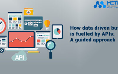 How data driven business is fuelled byMetricoid- APIs: A guided approach