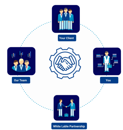 How white label partnership works in metricoid